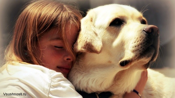 Почему любовь - это искренняя забота друг о друге (1)