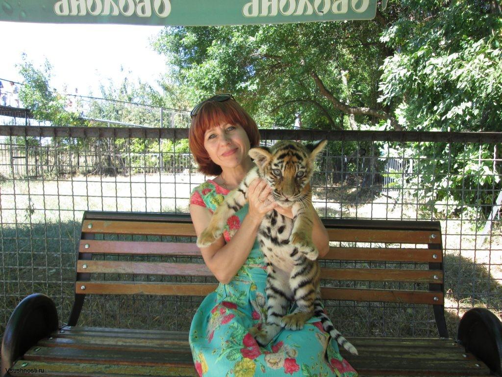amurskiy-tigr-3-1024x768
